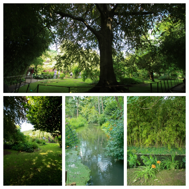 Giverny 27_06_10 d